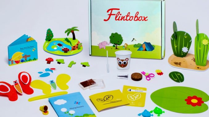 Flintobox Review