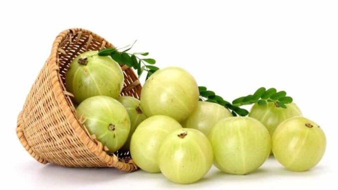 Top 10 Amazing Benefits Of Amla - The Indian Gooseberry 1