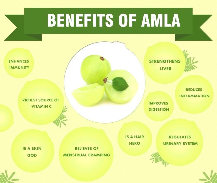 Top 10 Amazing Benefits Of Amla - The Indian Gooseberry