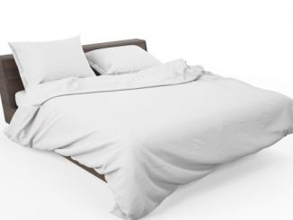 Beds - 4 Steps To Choose A New Bed For Your House