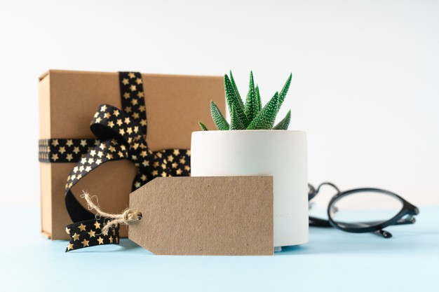 Christmas  gift ideas for coworkers $25, Christmas gift ideas for friends, secret santa game online, secret santa online gift exchange